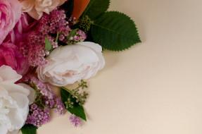 цветы, разные вместе, розы
