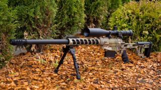 оружие, снайперская винтовка, тсвл-8, сталинград