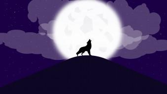 волков, волки, темноты, леса, хищник, оборотень, атмосфера, облака, луна, звезды