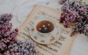 еда, напитки,  чай, сирень, чай, лепестки
