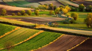 природа, поля, шоссе, серпантин