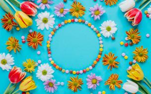цветы, разные вместе, тюльпаны, хризантемы