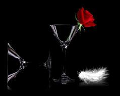цветы, розы, бокалы, роза, перо