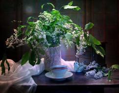 цветы, черемуха, букет