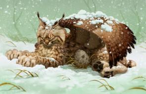 фэнтези, существа, рысь, фон, крыло, яйцо, снег