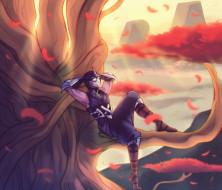 видео игры, league of legends, воин, дерево, листья, отдых, shen