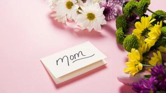праздничные, день матери, хризантемы, надпись