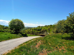 природа, дороги, дорога, проселочная