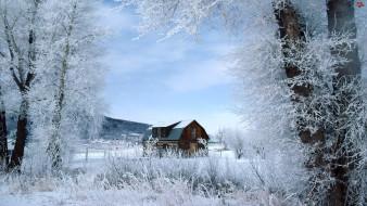 города, - здания,  дома, деревья, снег, зима, дом