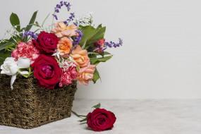 обои для рабочего стола 2560x1707 цветы, букеты,  композиции, розы, гвоздика