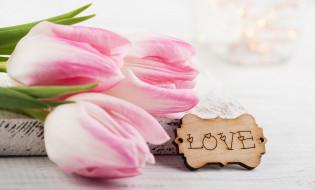 праздничные, день святого валентина,  сердечки,  любовь, тюльпаны, надпись