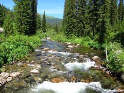 саяны, природа, реки, озера, россия, сибирь, река, деревья, камни