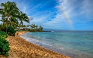 природа, тропики, море, пляж, песок, радуга, пальмы