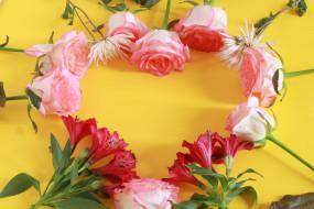 цветы, разные вместе, розы, альстромерия