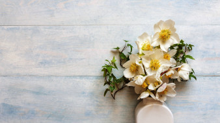 цветы, геллеборус , морозник, букет