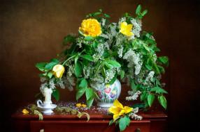 обои для рабочего стола 2000x1333 цветы, букеты,  композиции, черемуха, тюльпаны