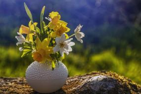 цветы, разные вместе, натюрморт, букет, цветов, ваза