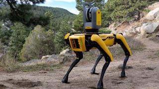 robot dog spot, boston dynamics, желтый