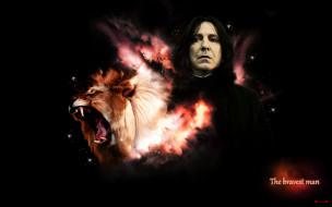Северус Снейп, профессор, лев, зельевар