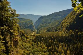 юпшарское ущелье абхазия, природа, горы, юпшарское, ущелье, абхазия, кавказ, дорога