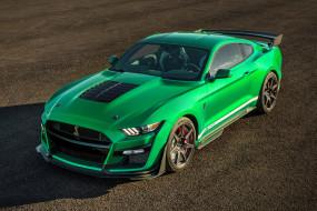 Ford Mustang GT обои для рабочего стола 3000x2000 ford mustang gt, автомобили, mustang, ford, gt, shelby, gt500, легендарный, американский, исполин, породистый, конь