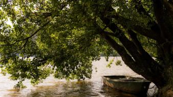 река, лодка, дерево