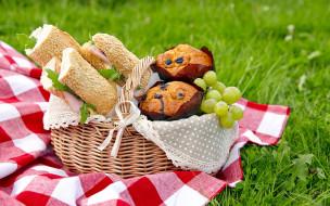 корзинка, бутерброды, кексы, пикник