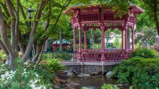 природа, парк, водоем, беседка