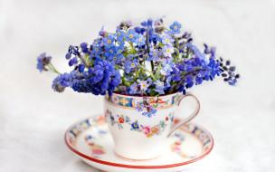 цветы, разные вместе, незабудки, мускари, букет