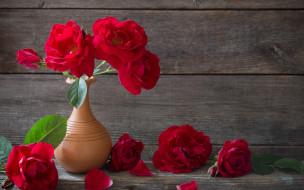цветы, розы, букет, ваза