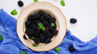 ягоды, ежевика, мята