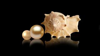разное, ракушки,  кораллы,  декоративные и spa-камни, жемчужина, ракушка