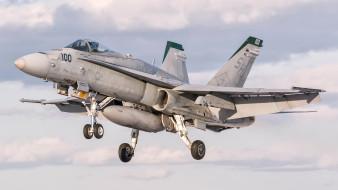 авиация, боевые самолёты, mcdonnell, douglas, fa-18, hornet