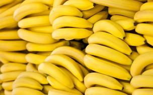 еда, бананы, желтые, много