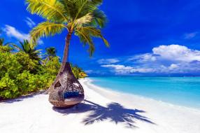 пальмы, лагуна, пляж