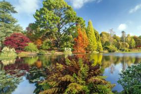 sheffield, south yorkshire, england, природа, парк, south, yorkshire