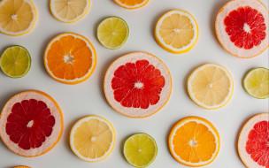 апельсин, грейпфрут, лимон, лайм