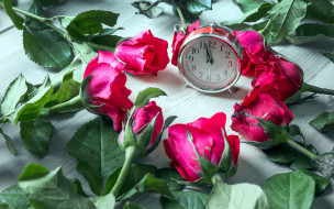 цветы, розы, бутоны, будильник