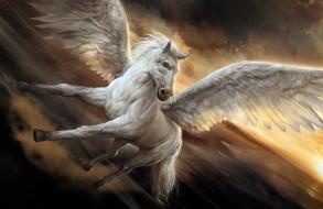 фэнтези, пегасы, конь, фон, крылья