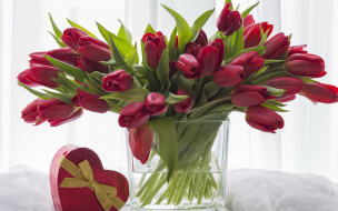 цветы, тюльпаны, бутоны, букет