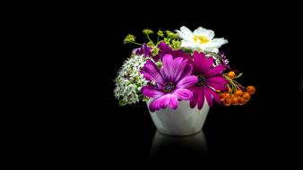 цветы, букеты,  композиции, рябина, остеопермум