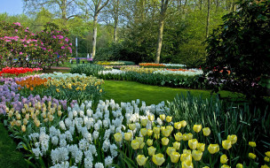 keukenhof, the netherlands, природа, парк, the, netherlands