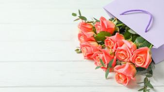обои для рабочего стола 2560x1440 цветы, розы, бутоны