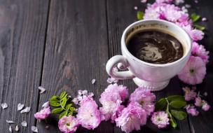 еда, кофе,  кофейные зёрна, чашка, цветы