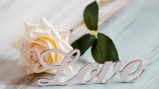 праздничные, день святого валентина,  сердечки,  любовь, роза, надпись