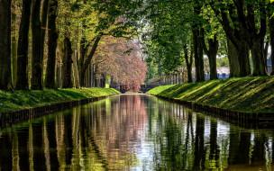 природа, парк, водоем, деревья, весна