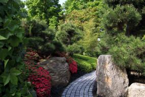 природа, парк, дорожка, камни, цветы
