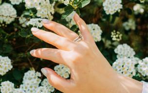 разное, руки,  ноги, цветы, женская, рука, кольца