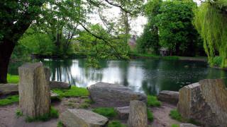 park oliwski, gdansk, poland, природа, парк, park, oliwski