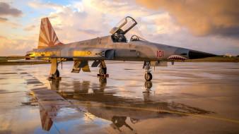 авиация, боевые самолёты, northrop, f-5n, tiger